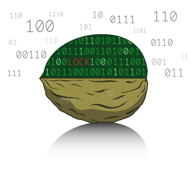 Digital nut. The nut consists of a computer code. Vector illustration vector illustration