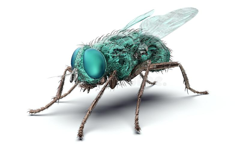 Digital safety concept electronic computer bug isolated. 3D illustration royalty free illustration