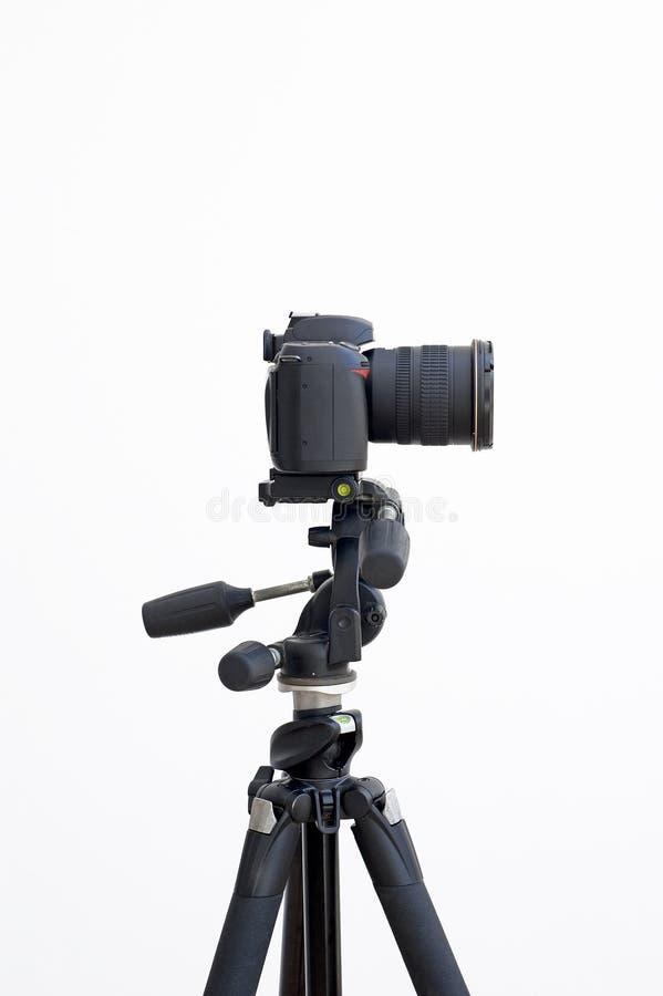 Digital slr camera on a tripod royalty free stock photo