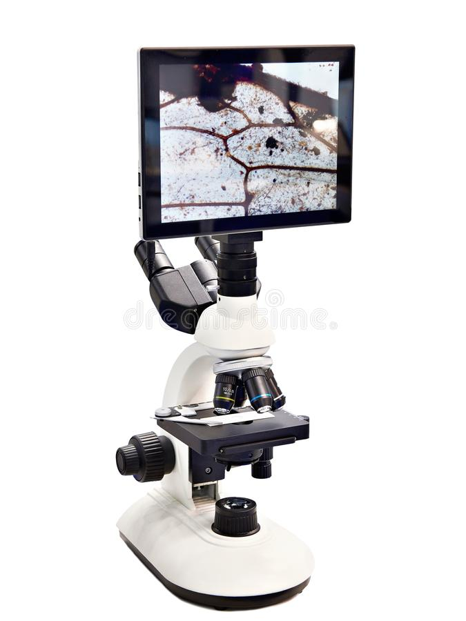 Digital-Stereomikroskop mit Monitor stockfotografie