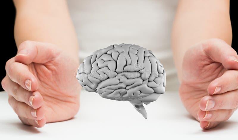 Digitale hersenen tussen twee handen royalty-vrije stock afbeelding