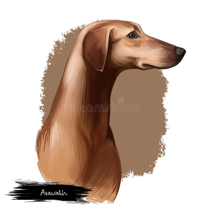 Digitale Kunstillustration der Azawakh-Hündchenzucht lokalisiert auf Weiß Populäres Welpenporträt mit Text Nette Haustierhand gez lizenzfreie stockbilder