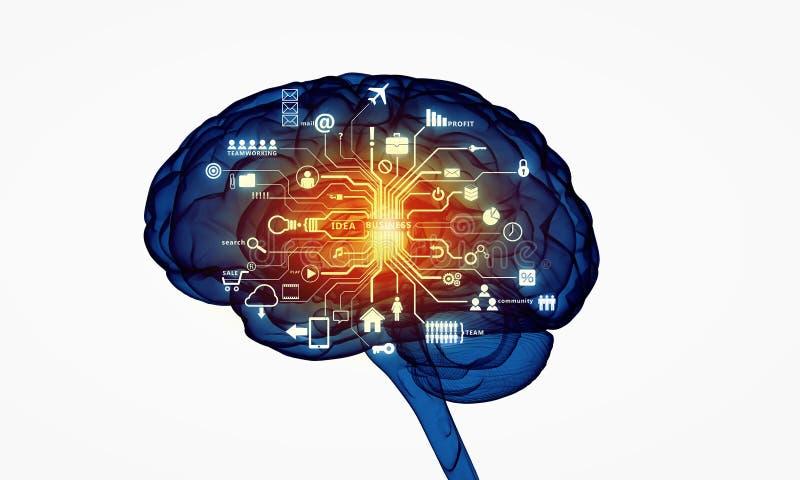 Digitale menselijke hersenen stock illustratie