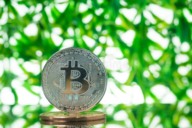 Digitale Währung Bitcoin, Stückchenmünze auf grünem unscharfem bokeh Hintergrund, Cryptocurrency-Geldkonzept lizenzfreie stockfotos