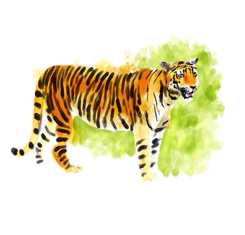 Digitales Aquarell des Tigers vektor abbildung