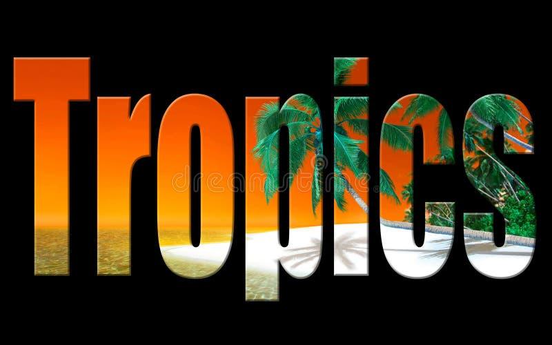 Digitales Foto Kunst der Tropen lizenzfreie abbildung
