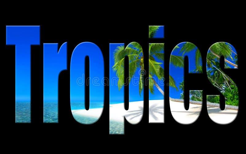 Digitales Foto Kunst der Tropen vektor abbildung