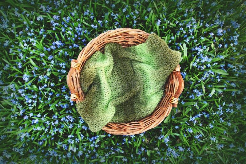 Digitalfotografie-Hintergrund des Frühlings-Blumen-Feldes und der hölzernen Korb-Stütze stockbild