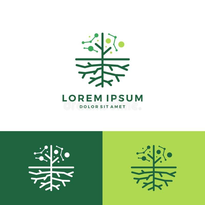 digitalt träd och att rota logo vektor illustrationer