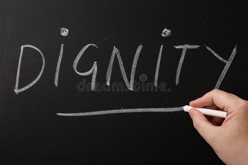 Dignità fotografie stock libere da diritti