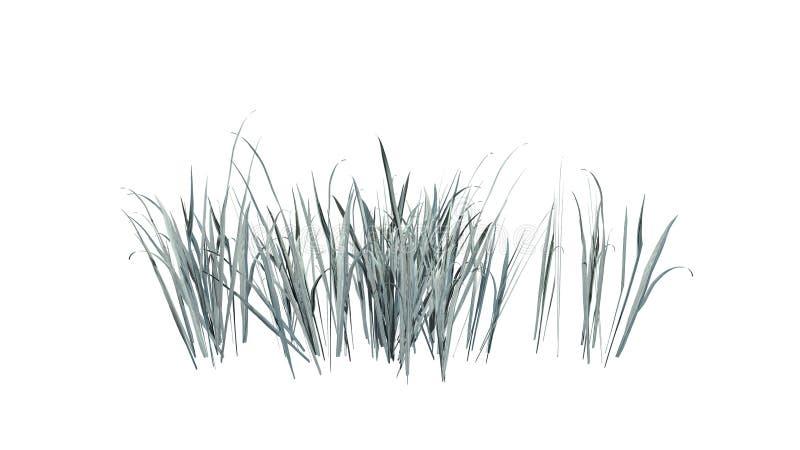 Dik Gras in de winter vector illustratie