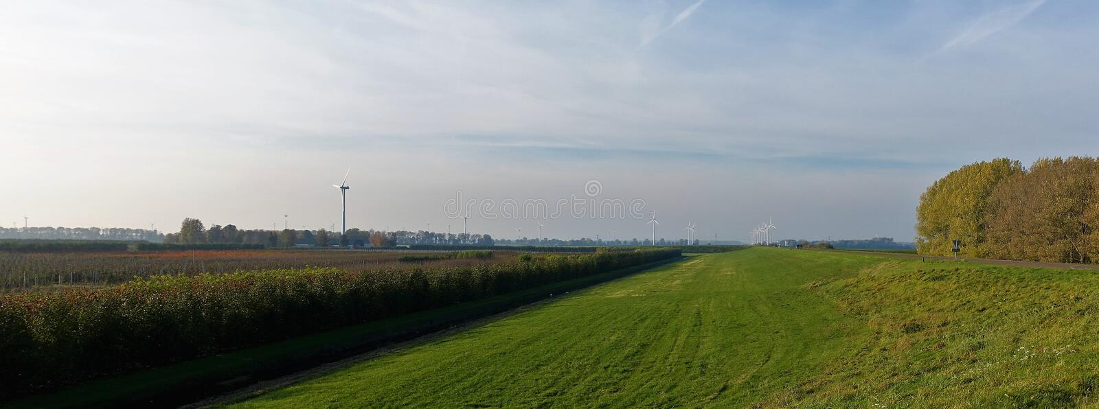 Polder landscape in Flevoland. The landscape of Zeewolde Flevoland contains the dike, open space, agriculture, the sky, trees and windmills stock photo