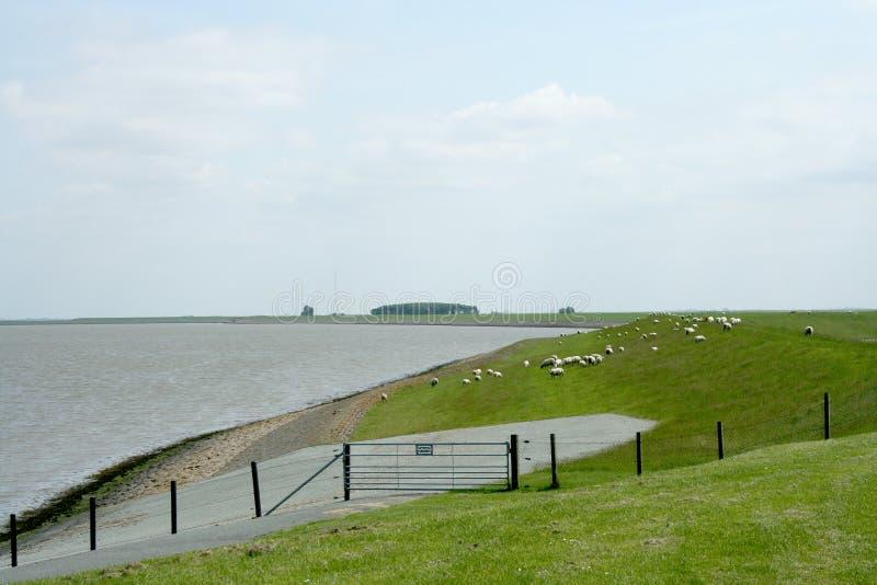 And Wadden sea. Netherlands,Groningen,Delfzijl,Termunterzijl,july 2016:Dike and Wadden sea stock photography