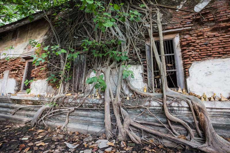 Dilapidated church in Wat Rat Bamrung Wat Ngon Kai - Samut Sakhon, Thailand stock photos