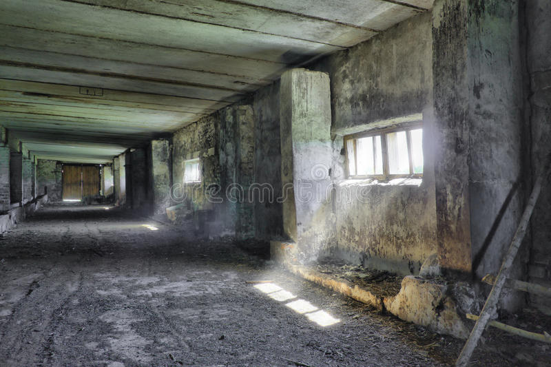 Download Dilapidated Gammal Jordbruks- Byggnad Fotografering för Bildbyråer - Bild av smutsigt, inre: 19788817