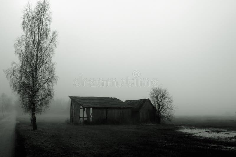 Dilapidated schuur in mist royalty-vrije stock foto's