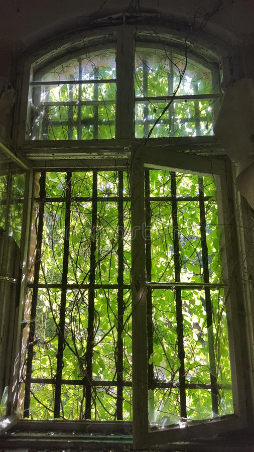 Dilapidated window royalty free stock photography
