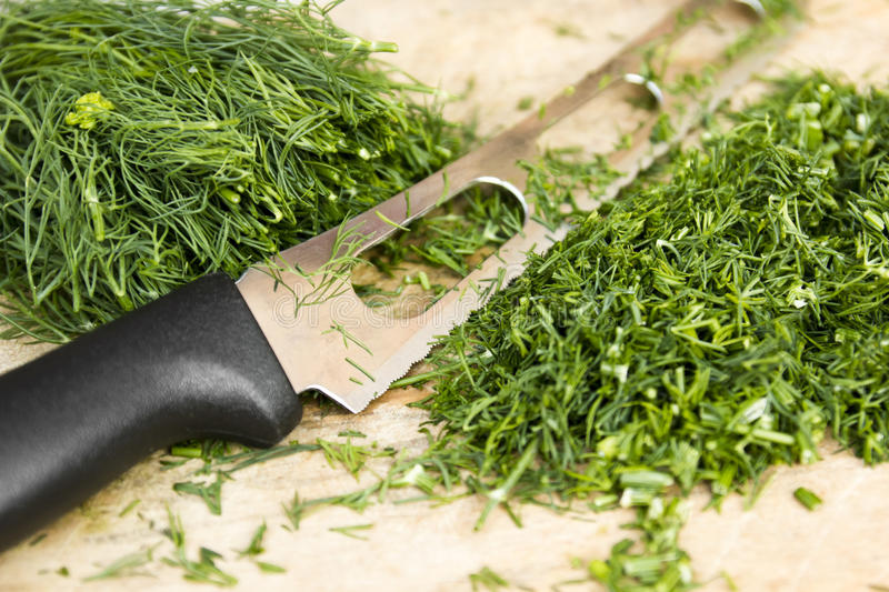 Download Dill stock image. Image of lettuce, preparation, useful - 25623937