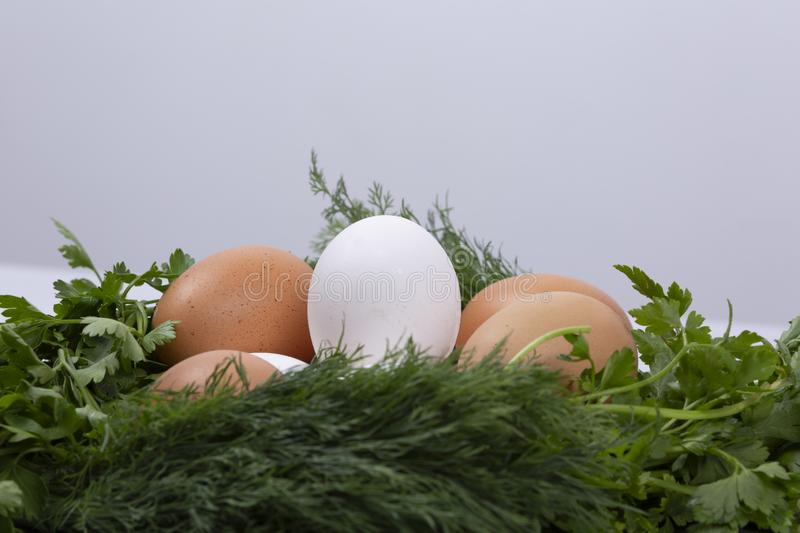 Dill parsley wreath with eggs stock image