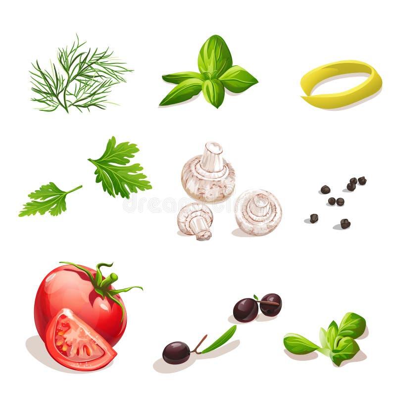 Dill persilja, tomat, champinjoner, oliv, basilika, svartpeppar stock illustrationer