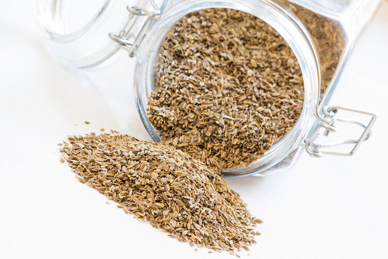 Dill seeds royalty free stock image