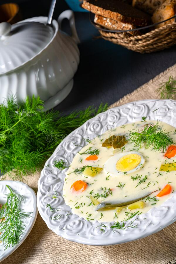 Dill soup with egg and fresh dill royalty free stock image