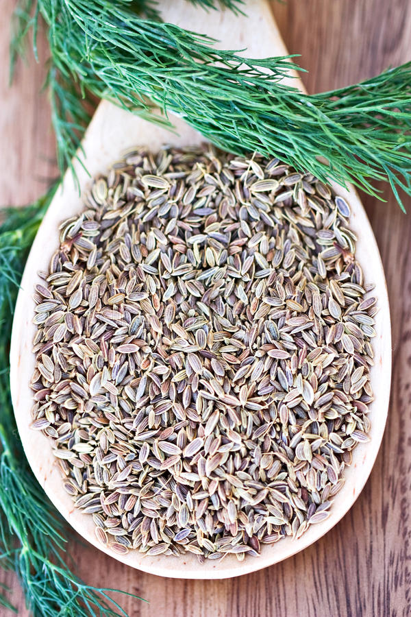 Download Dill Weed and Seed stock photo. Image of aromatic, condiments - 12381432