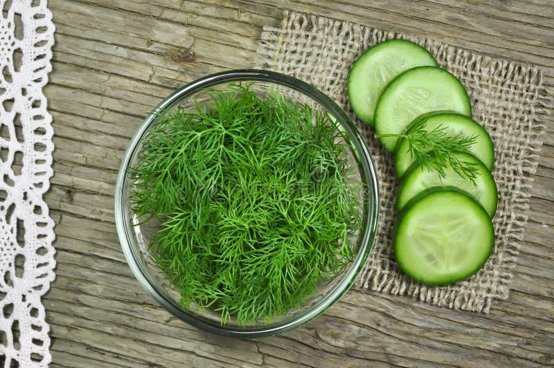 Dille en komkommer stock fotografie