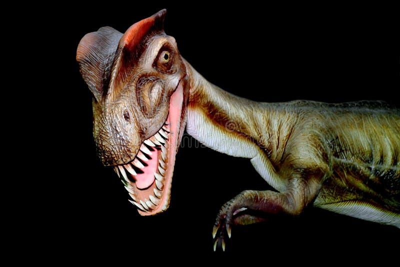 Dilophosaurus динозавра Модель r стоковое фото