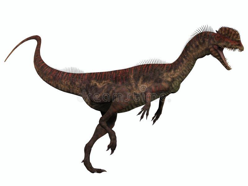 Dilophosaurus no branco ilustração do vetor