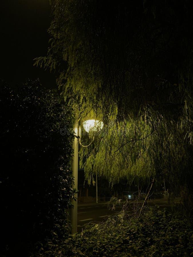 Dim streetlamp at night royalty free stock image