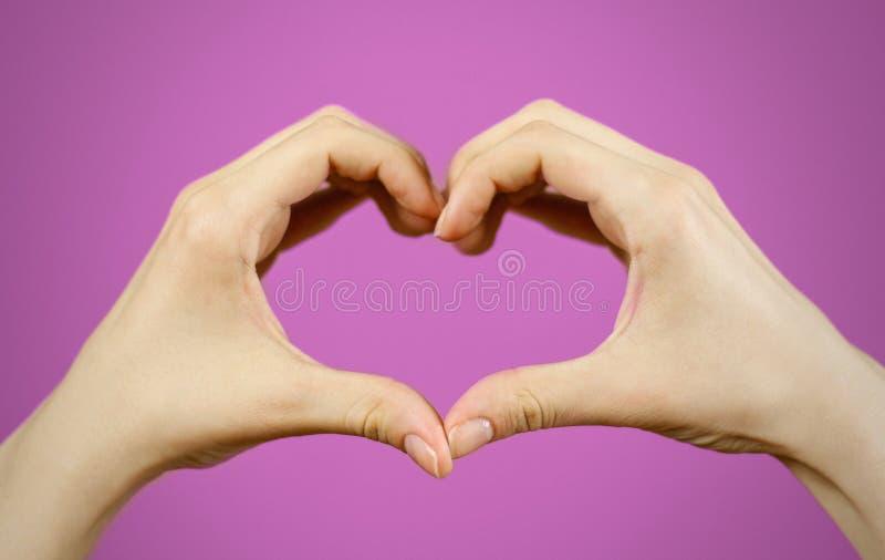 Dimensión de una variable del corazón hecha de dos palmas hermosas Aislado en púrpura fotografía de archivo libre de regalías