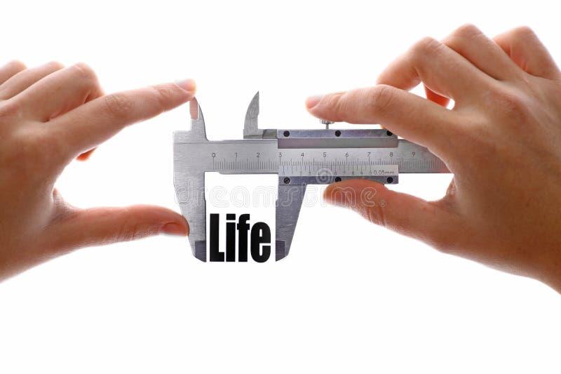 Dimensione di vita fotografia stock libera da diritti