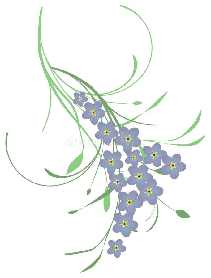 Dimentichimi non fiori immagini stock