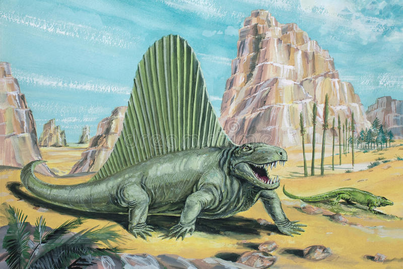 Dimetrodon. A flesh-eating, early mammal-like reptile not actually a dinosaur. About 11 ft 3-5 m long. Background animal: Varanosaurus. Permian, about 250 stock illustration