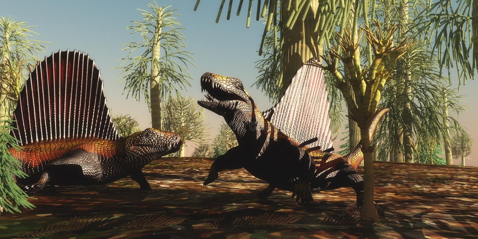 Dimetrodon Permian Reptiles. Dimetrodon reptiles have a territorial dispute over which animal is stronger and braver in the Permian Age vector illustration