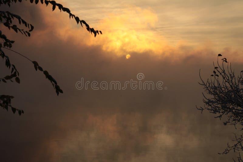 dimmaängmorgon över vatten arkivbild