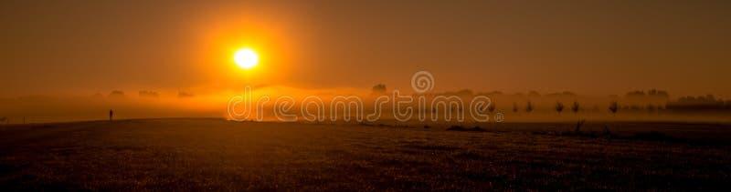 Dimma över fältet arkivfoto