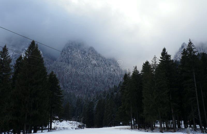 Dimma döljer berget royaltyfria bilder