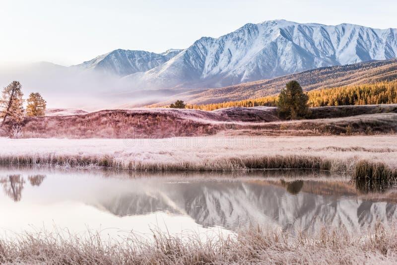 Dimma i bergdalen Moln av dimma under den rosa himlen tidigt på morgonen royaltyfria foton