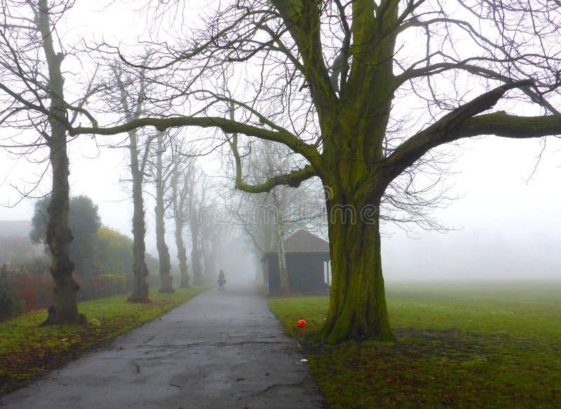 Dimma i parkera Rött klumpa ihop sig harv fotografering för bildbyråer