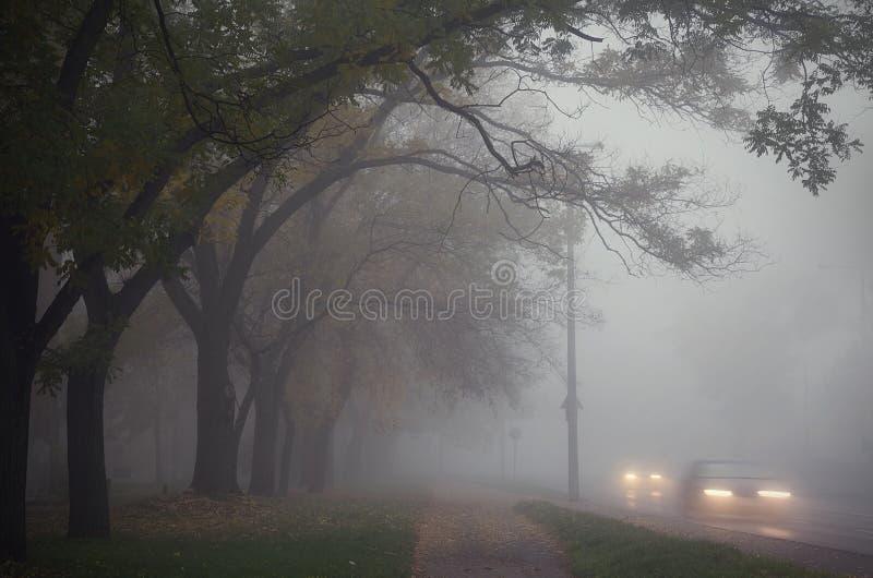 Dimma i staden royaltyfri fotografi