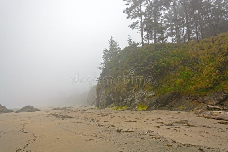 Dimma och mist på en kust- strand för hav arkivfoton