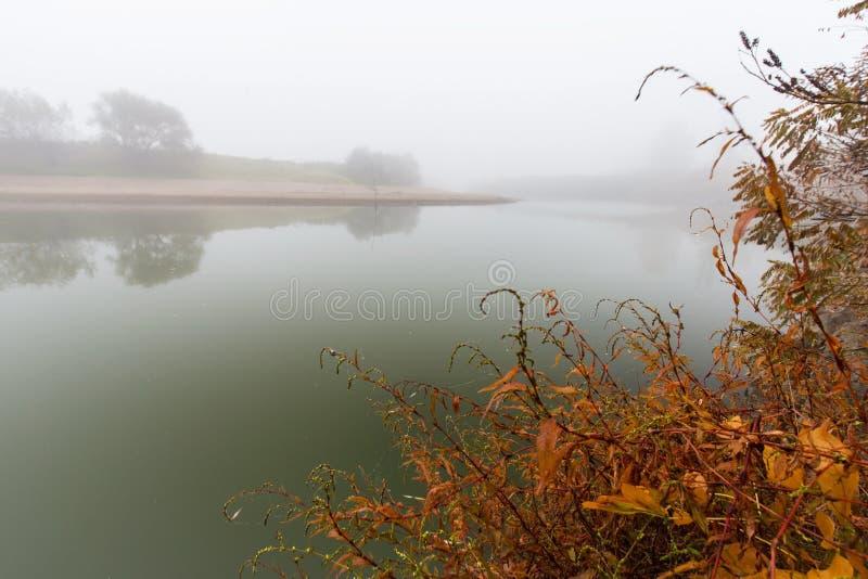 Dimma och mist på en lös flod royaltyfri fotografi