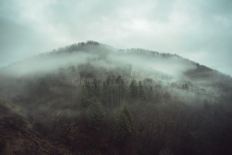 Dimma på berg arkivbilder