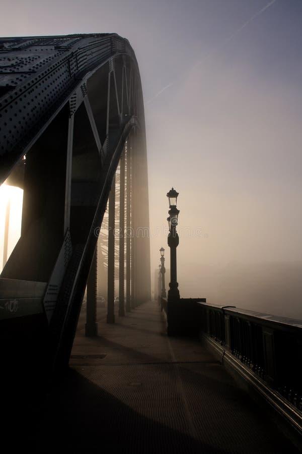 dimma tyne fotografering för bildbyråer