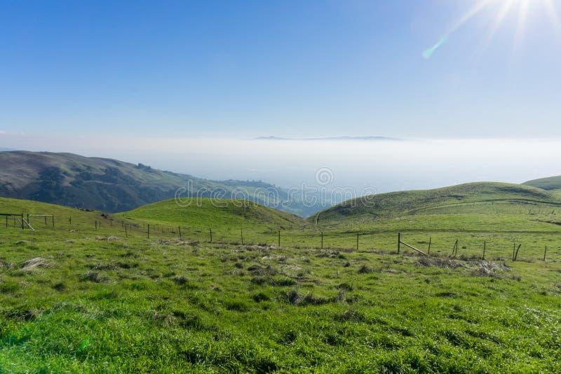 Dimmabeläggning San Jose som ses så från toppiga bergskedjan utsiktöppet utrymmesylt, södra San Francisco Bay, Kalifornien royaltyfria bilder