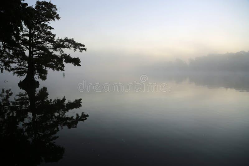 Dimman är kommande royaltyfri fotografi