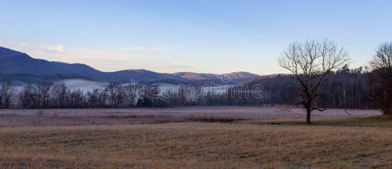 Dimmig cadesliten vikmorgon i stor nationalpark för rökiga berg arkivbild