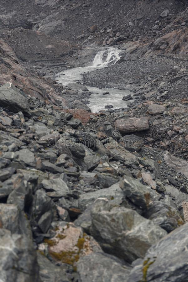 Dimmig dag i bergen nära Franz Josef Glacier royaltyfri fotografi
